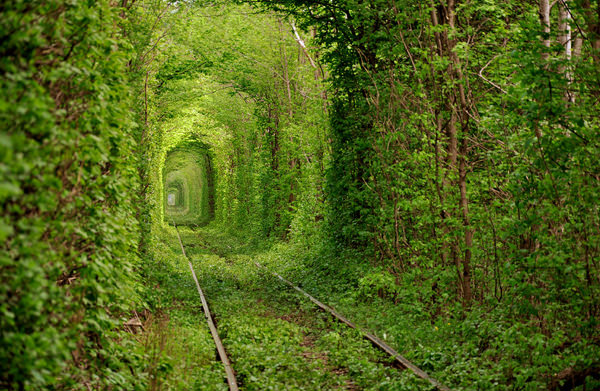 Tunnel of Love, Ukrayna